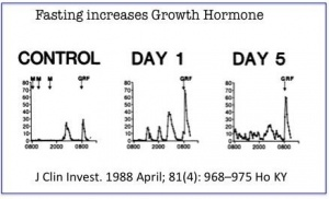 That Is A 1250 Increase In Growth Hormone Even With Relatively Short 5 Day Fast We Are Talking About 300 All This Hgh Increases Without